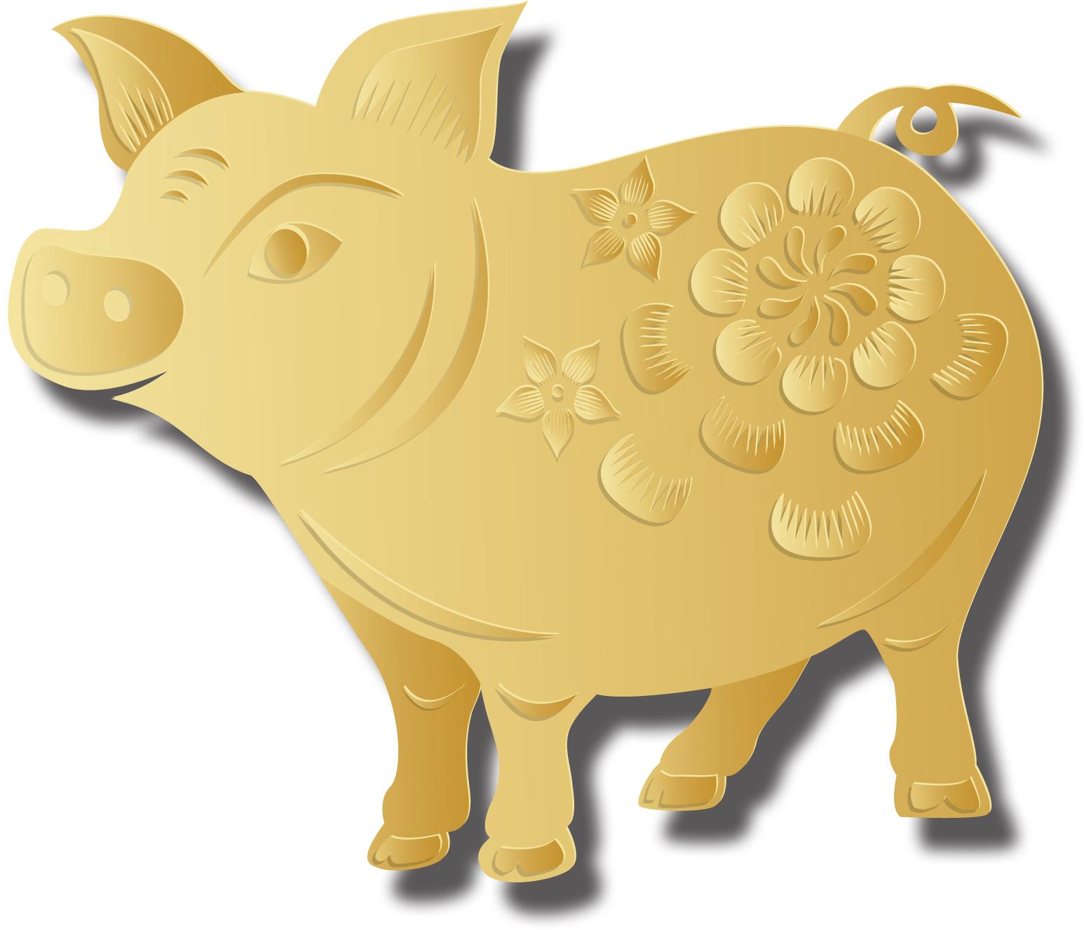 pig-on-white